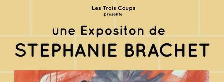 Vernissage de Stéphanie Brachet
