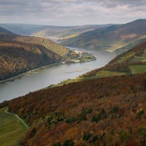 Allemagne : La vallée du Rhin