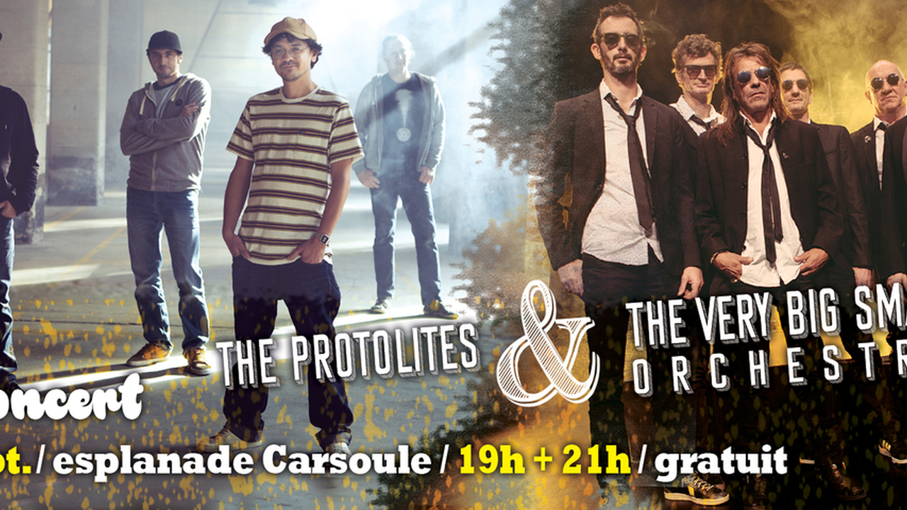 The very big small orchestra + The Protolites