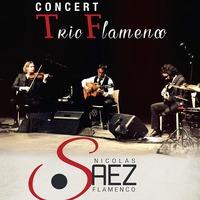 Nicolas Saez Trio Flamenco
