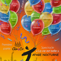 Spectacle musical du groupe vocal TAPAGE NOCTURNE