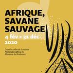 Afrique, savane sauvage
