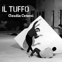 Il tuffo / Claudia Catarzi