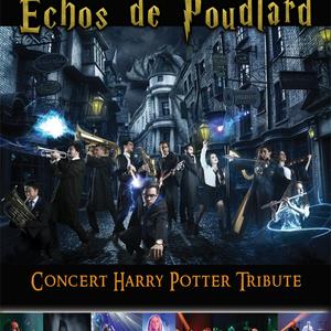 NEKO LIGHT ORCHESTRA - ECHOS DE POUDLARD