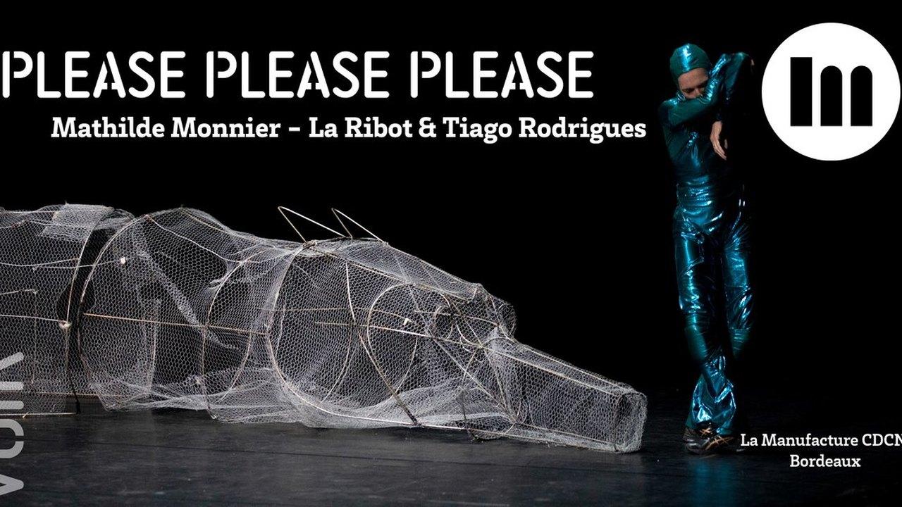 Please please please - Mathilde Monnier, La Ribot, Tiago Rodrigues