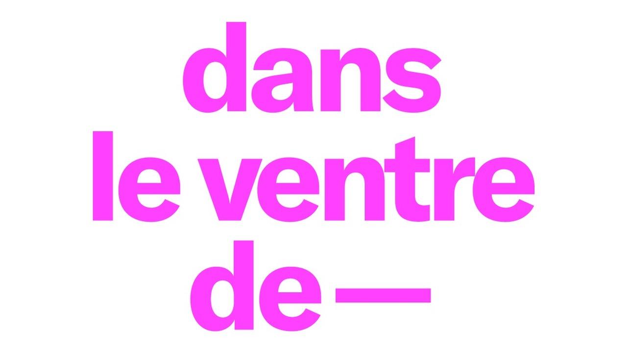 DANS LE VENTRE DE — SOFIA COPPOLA  ~ Marie-Antoinette
