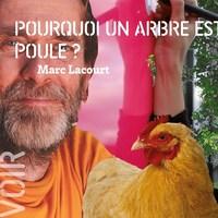 [ POUCE ! ] Pourquoi un arbre est une poule ? - Marc Lacourt & Delphine Perret