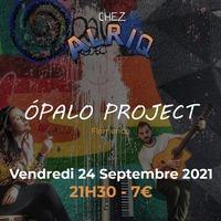 Ópalo Project
