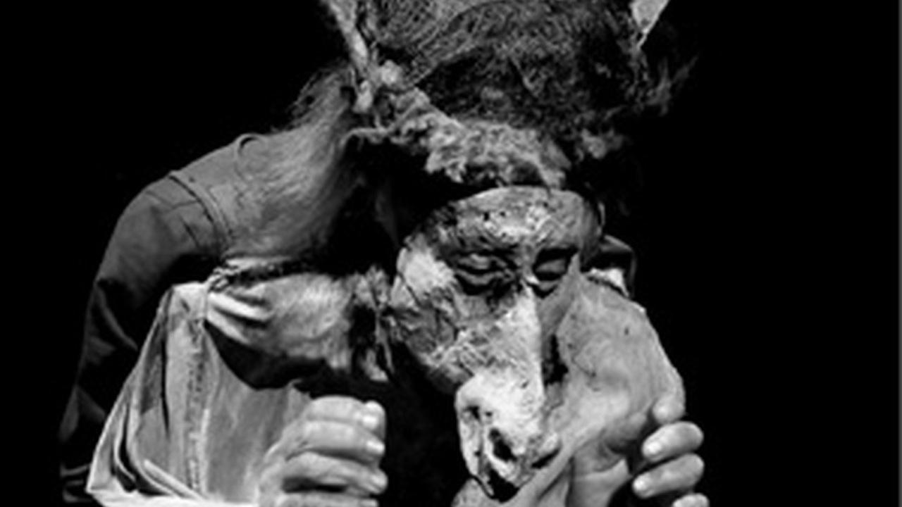 VOYAGE CHIMÈRE / Ilka Schönbein – Theater Meschugge